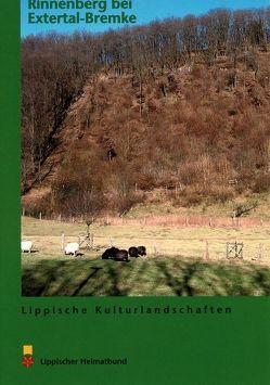 Der Rinnenberg bei Extertal-Bremke von Füller,  Matthias, Rahns,  Andreas, Schultz,  Hartwig, Steinheider,  Klaus