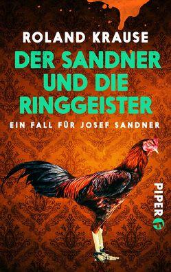 Der Sandner und die Ringgeister von Krause,  Roland