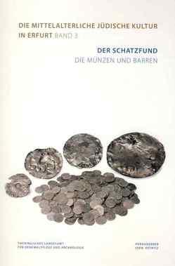 Der Schatzfund. Die Münzen und Barren von Lehmann,  Robert, Mecking,  Oliver, Ostritz,  Sven, Schlapke,  Mario, Vogt,  Carla