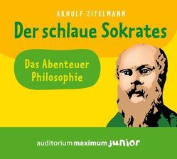 Der schlaue Sokrates von Falk,  Martin, Zitelmann,  Arnulf