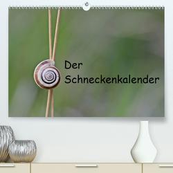 Der Schneckenkalender (Premium, hochwertiger DIN A2 Wandkalender 2021, Kunstdruck in Hochglanz) von Schmutzler-Schaub,  Christine