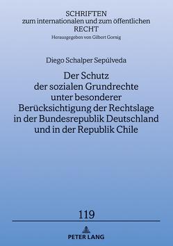Der Schutz der sozialen Grundrechte unter besonderer Berücksichtigung der Rechtslage in der Bundesrepublik Deutschland und in der Republik Chile von Schalper,  Diego