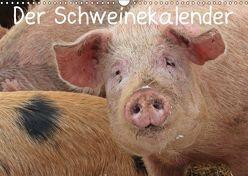 Der Schweinekalender (Wandkalender 2019 DIN A3 quer) von Schmutzler-Schaub,  Christine