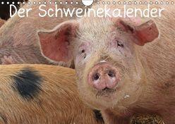 Der Schweinekalender (Wandkalender 2019 DIN A4 quer) von Schmutzler-Schaub,  Christine