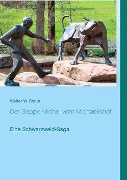 Der Seppe-Michel vom Michaelishof von Braun,  Walter W.