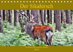 Der Sikahirsch – Der kleine Asiat in unseren Wäldern (Tischkalender 2019 DIN A5 quer) von Klatt,  Arno