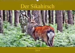Der Sikahirsch – Der kleine Asiat in unseren Wäldern (Wandkalender 2019 DIN A2 quer) von Klatt,  Arno