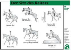 Der Sitz des Reiters von Deutsche Reiterliche Vereinigung e.V. (FN), Deutsche Reiterliche Vereinigung e.V. (FN) - Bereich Sport,  Abt. Ausbildung, Koller,  Cornelia