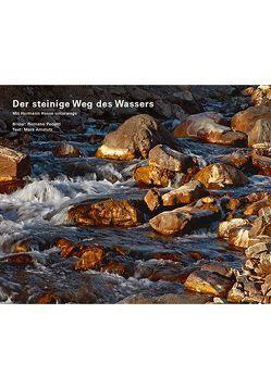 Der steinige Weg des Wassers von Amstutz,  Mark, Pedetti,  Romano