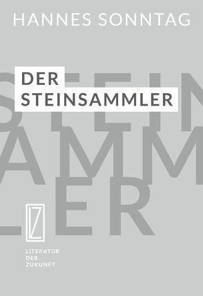 Der Steinsammler von Sonntag,  Hannes