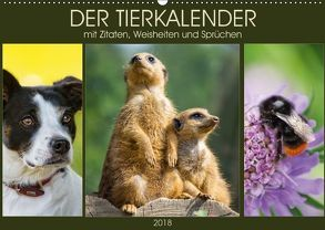 Der Tierkalender mit Zitaten, Weisheiten und Sprüchen (Wandkalender 2018 DIN A2 quer) von DESIGN Photo + PhotoArt,  AD, Dölling,  Angela