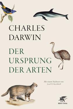 Der Ursprung der Arten von Darwin,  Charles, Schönfeld,  Eike