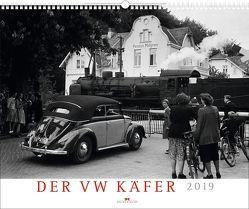 Der VW Käfer 2019