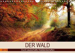 Der Wald. Durch zauberhafte Waldlandschaften (Wandkalender 2019 DIN A4 quer) von Hurley,  Rose