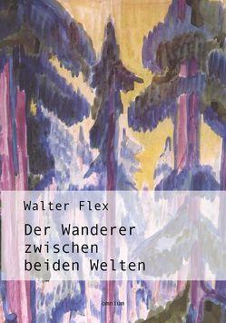 Der Wanderer zwischen beiden Welten von Flex,  Walter