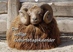 Der wollige Geburtstagskalender (Wandkalender immerwährend DIN A3 quer) von Berg,  Martina