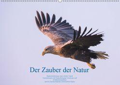 Der Zauber der Natur (Wandkalender 2019 DIN A2 quer) von Holzhausen,  Andreas