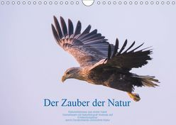 Der Zauber der Natur (Wandkalender 2019 DIN A4 quer) von Holzhausen,  Andreas
