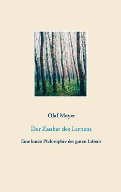Der Zauber des Lernens von Meyer,  Olaf