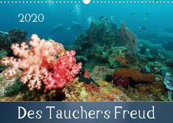Des Tauchers Freud (Wandkalender 2020 DIN A3 quer) von Schumann,  Bianca