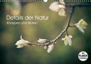 Details der Natur – Knospen und Blüten (Wandkalender 2018 DIN A3 quer) von Dobrindt,  Jeanette