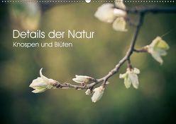 Details der Natur – Knospen und Blüten (Wandkalender 2019 DIN A2 quer) von Dobrindt,  Jeanette
