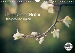 Details der Natur – Knospen und Blüten (Wandkalender 2019 DIN A4 quer) von Dobrindt,  Jeanette