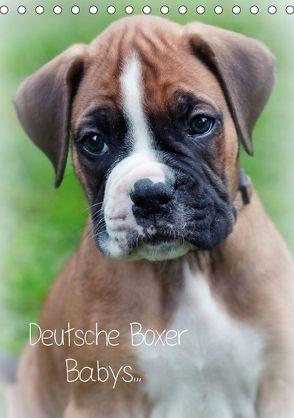Deutsche Boxer Babys… (Tischkalender 2018 DIN A5 hoch) von Schwalm Böttcher,  Nicole