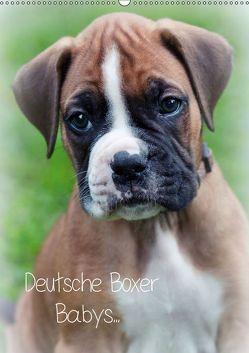 Deutsche Boxer Babys… (Wandkalender 2019 DIN A2 hoch) von Schwalm Böttcher,  Nicole
