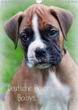 Deutsche Boxer Babys… (Wandkalender 2019 DIN A4 hoch) von Schwalm Böttcher,  Nicole