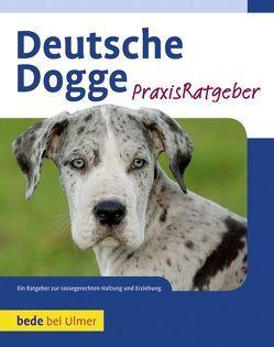 Deutsche Dogge von Haas,  S. William
