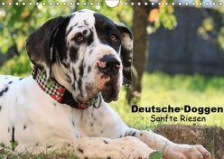 Deutsche Doggen – Sanfte Riesen (Wandkalender 2019 DIN A4 quer) von Reiß-Seibert,  Marion