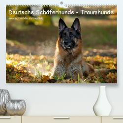 Deutsche Schäferhunde – Traumhunde (Premium, hochwertiger DIN A2 Wandkalender 2020, Kunstdruck in Hochglanz) von Schiller,  Petra