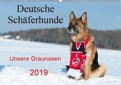 Deutsche Schäferhunde Unsere Graunasen (Wandkalender 2019 DIN A2 quer) von Schiller,  Petra