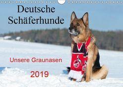 Deutsche Schäferhunde Unsere Graunasen (Wandkalender 2019 DIN A4 quer) von Schiller,  Petra