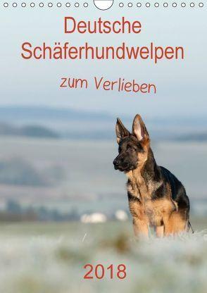 Deutsche Schäferhundwelpen zum Verlieben (Wandkalender 2018 DIN A4 hoch) von Schiller,  Petra