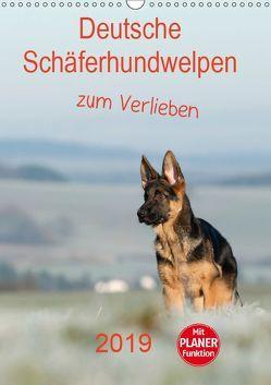 Deutsche Schäferhundwelpen zum Verlieben (Wandkalender 2019 DIN A3 hoch) von Schiller,  Petra