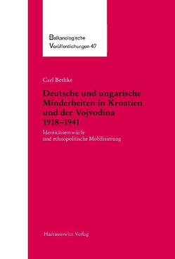 Deutsche und ungarische Minderheiten in Kroatien und der Vojvodina 1918-1941 von Bethke,  Carl