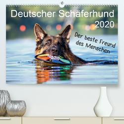 Deutscher Schäferhund – Der beste Freund des Menschen (Premium, hochwertiger DIN A2 Wandkalender 2020, Kunstdruck in Hochglanz) von Schiller,  Petra