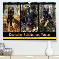 Deutscher Schäferhund-Welpe – aus der Ostdeutschen Arbeitslinie (Premium, hochwertiger DIN A2 Wandkalender 2020, Kunstdruck in Hochglanz) von Riedel,  Tanja