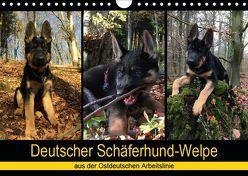 Deutscher Schäferhund-Welpe – aus der Ostdeutschen Arbeitslinie (Wandkalender 2019 DIN A4 quer) von Riedel,  Tanja
