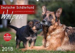 Deutscher Schäferhund – Welpen (Wandkalender 2018 DIN A2 quer) von Schiller,  Petra