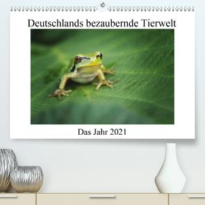 Deutschlands bezaubernde Tierwelt (Premium, hochwertiger DIN A2 Wandkalender 2021, Kunstdruck in Hochglanz) von Reibert,  Björn