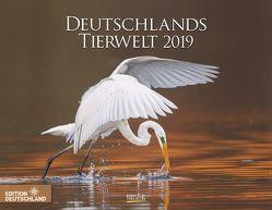 Deutschlands Tierwelt 2019 von Korsch Verlag
