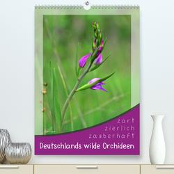 Deutschlands wilde Orchideen (Premium, hochwertiger DIN A2 Wandkalender 2020, Kunstdruck in Hochglanz) von Löwer,  Sabine