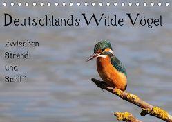 Deutschlands wilde Vögel zwischen Strand und Schilf (Tischkalender 2019 DIN A5 quer) von Lebeus,  Marvin