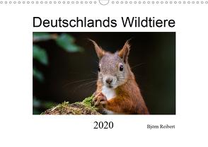 Deutschlands Wildtiere (Wandkalender 2020 DIN A3 quer) von Reibert,  Björn