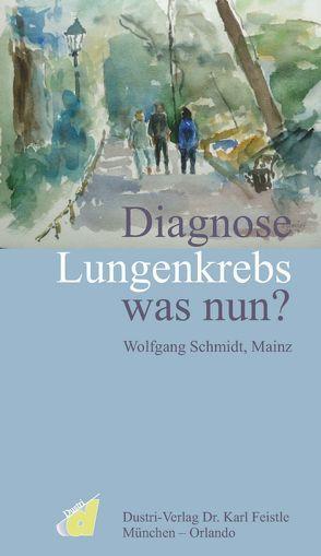 Diagnose Lungenkrebs was nun? von Schmidt,  Wolfgang