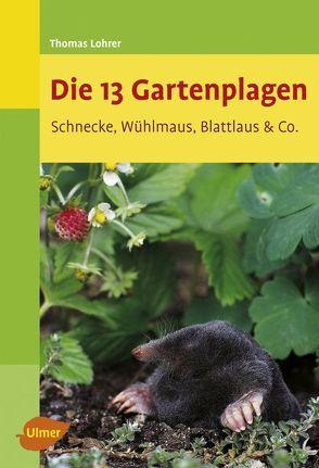 Die 13 Gartenplagen von Lohrer,  Thomas