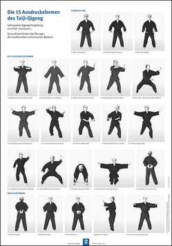 Die 15 Ausdrucksformen des Taiji Qigong Poster von Hildenbrand,  Gisela